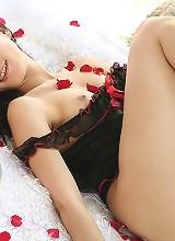 Lin Lin Rose Petal Strip